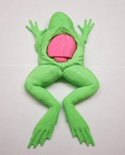 Frog with